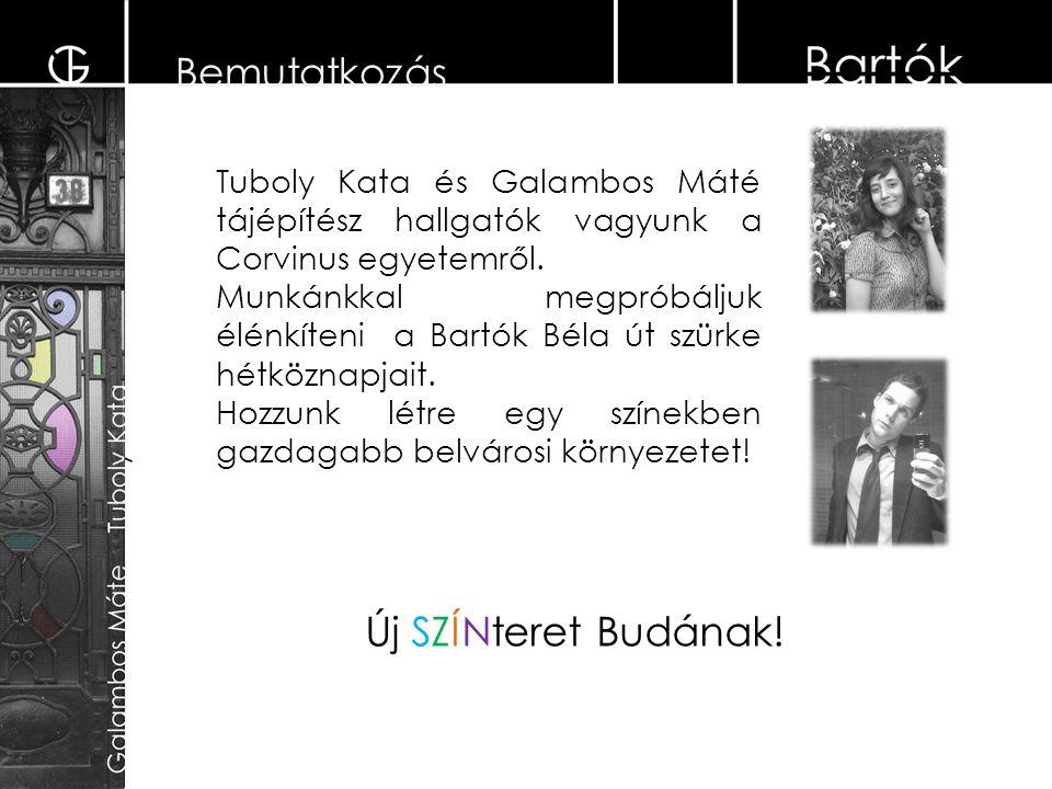 Bemutatkozás Tuboly Kata és Galambos Máté tájépítész hallgatók vagyunk a Corvinus egyetemről. Munkánkkal megpróbáljuk élénkíteni a Bartók Béla út szür