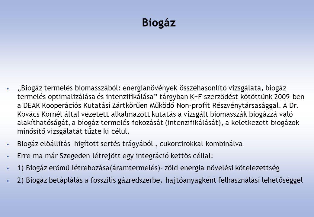 Hibrid hajtásrendszerek • Évekkel ezelőtt a Solaris magyar kooperációban készült hibrid megoldását is teszteltük.
