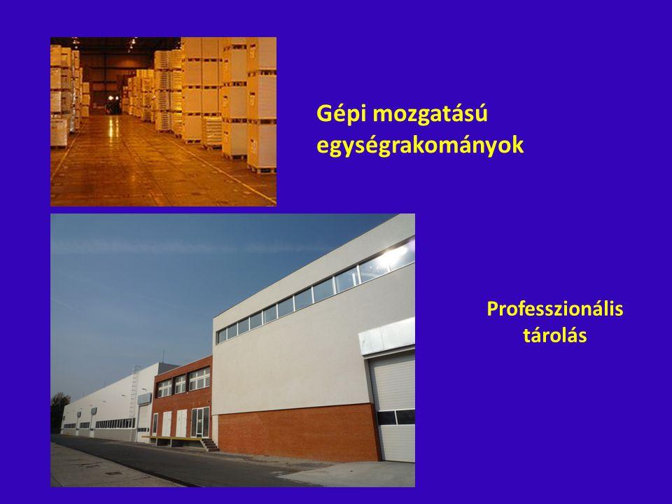 Gépi mozgatású egységrakományok Professzionális tárolás