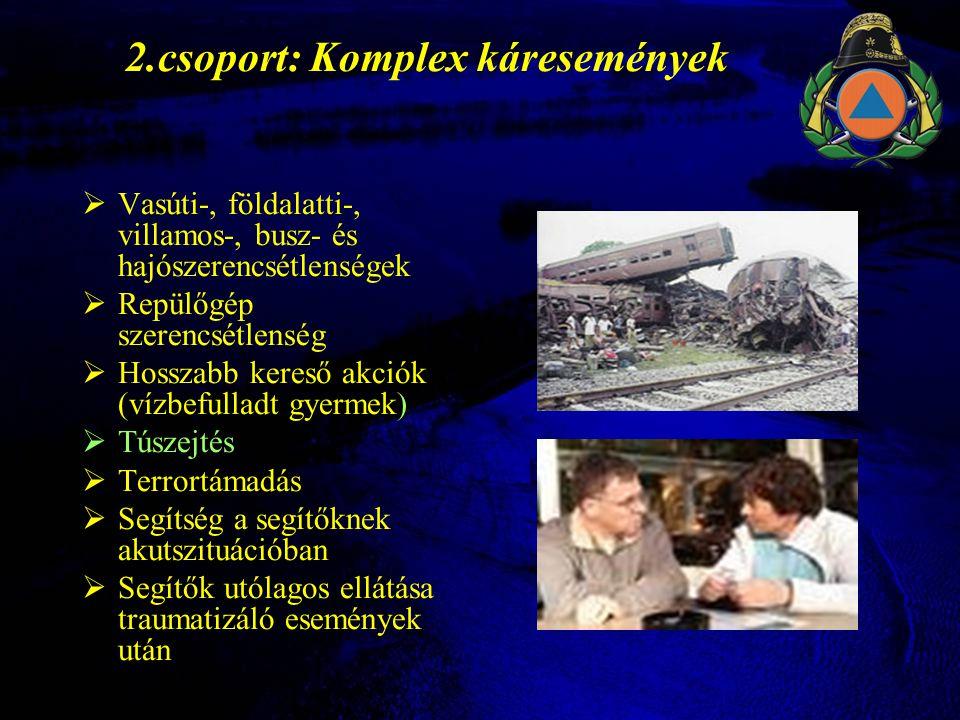 3.csoport: Katasztrófák  Természeti katasztrófák  Tűzvész, robbanások, tetőbeomlások  Traumatizált menekültek ellátása Nem az érintettek száma a mérvadó, hanem a lehetséges traumatizáció súlya.