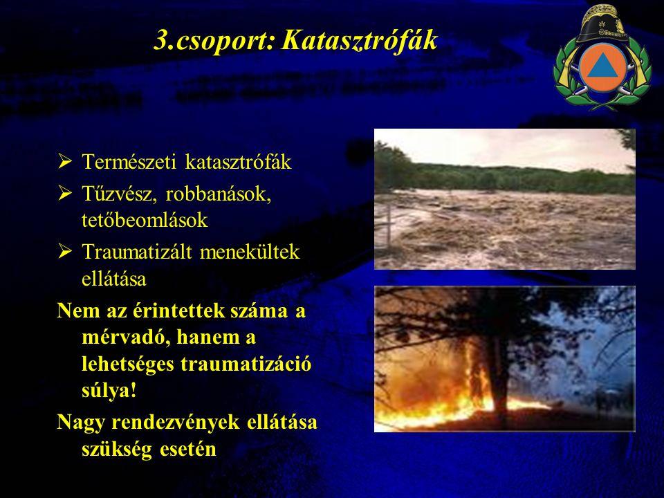 A KIT alkalmazásának rendje Megyei Katasztrófavédelmi Igazgatóság Kárhelyszín - mentésirányító - mentésirányító Nem alkalmazható Alkalmazható Együttműködők Rendőrség, Rendőrség, Mentők Mentők Tűzoltóság, stb.