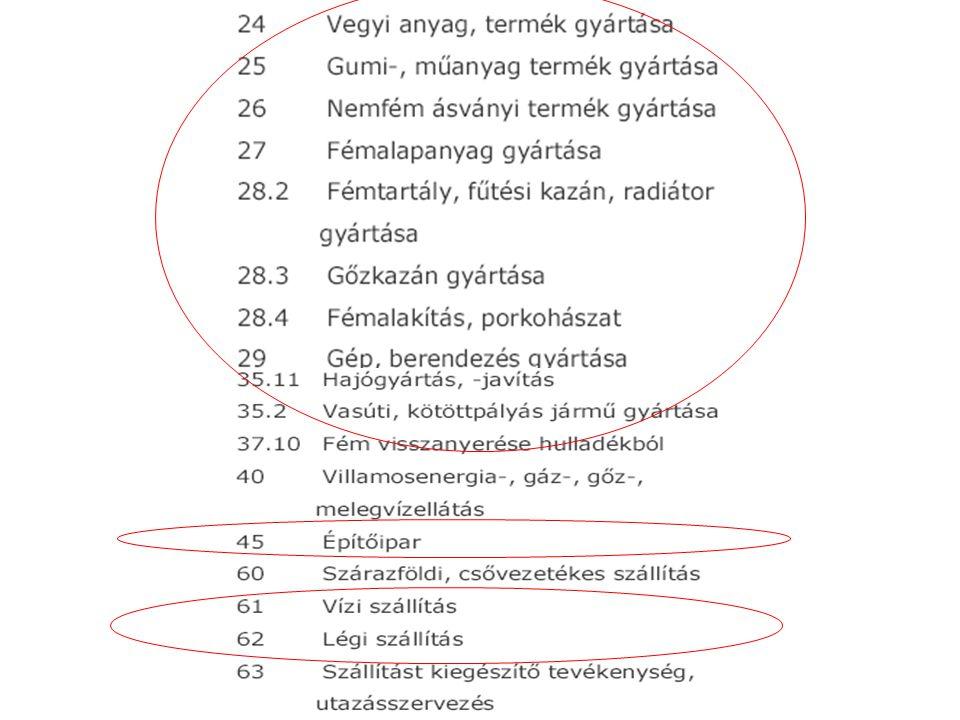 Kockázat mérlegelésére szolgáló/alkalmas paraméterek Vércukor szint (önellenőrzés) Fluktuál Széria mérések Diabetológiai értékelés Folyamatos glukóz monitorozás Súlyos hypoglikémia anamnézis Magas rizikójú foglalkozások Minden epizód értékelendő a kockázatbecslés szempontjából Hypoglikémia felismerő képesség Gyakori önellenőrzés, korrekciós lépések- edukáció Krónikus szövődmények amputáció, vakság, veseelégtelenség, neuropathia