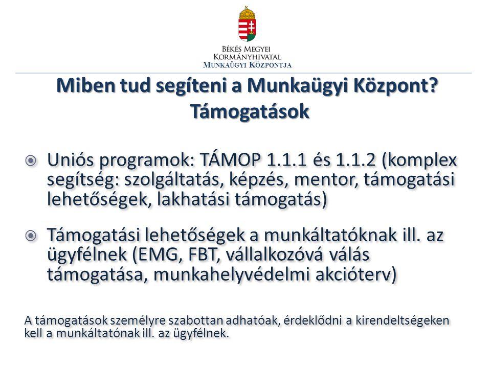 M UNKAÜGYI K ÖZPONTJA  Uniós programok: TÁMOP 1.1.1 és 1.1.2 (komplex segítség: szolgáltatás, képzés, mentor, támogatási lehetőségek, lakhatási támogatás)  Támogatási lehetőségek a munkáltatóknak ill.