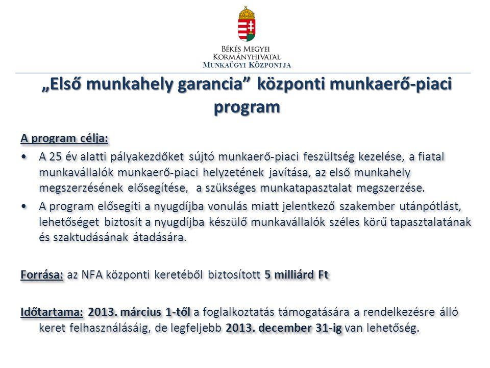 M UNKAÜGYI K ÖZPONTJA A program célja: •A 25 év alatti pályakezdőket sújtó munkaerő-piaci feszültség kezelése, a fiatal munkavállalók munkaerő-piaci h
