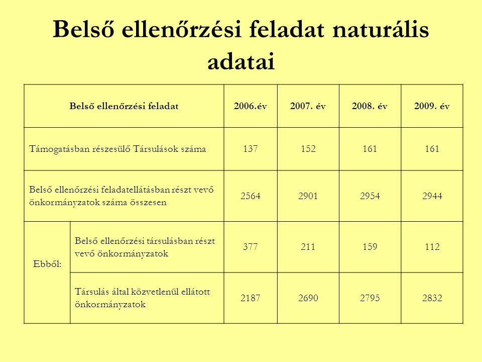 Belső ellenőrzési feladat naturális adatai Belső ellenőrzési feladat2006.év2007.