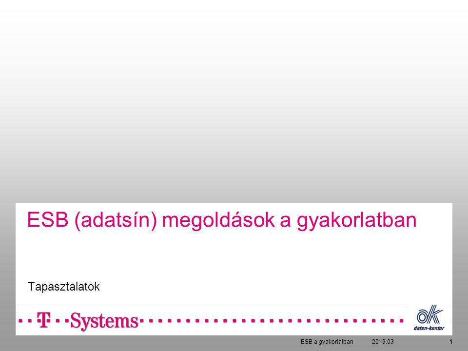 1 ESB (adatsín) megoldások a gyakorlatban Tapasztalatok 2013.03ESB a gyakorlatban