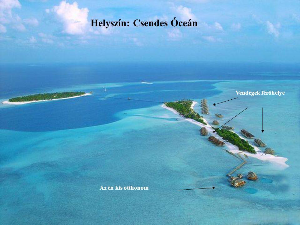 Helyszín: Csendes Óceán Vendégek férőhelye Az én kis otthonom