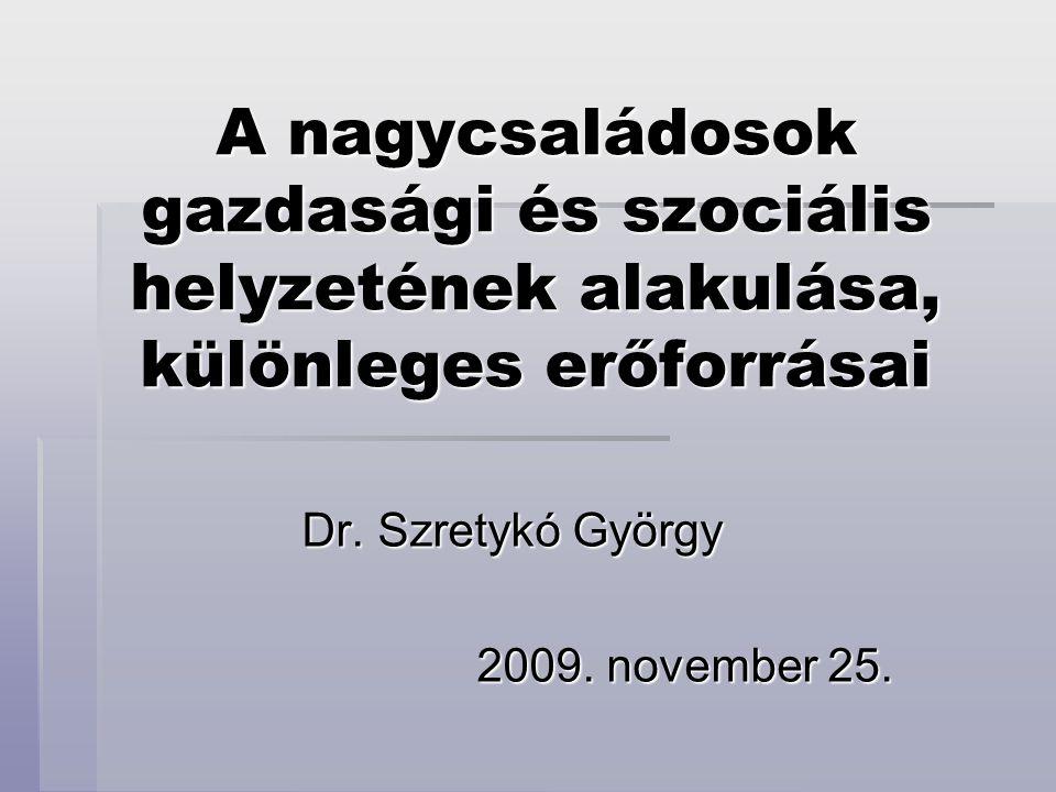 A nagycsaládosok gazdasági és szociális helyzetének alakulása, különleges erőforrásai Dr. Szretykó György 2009. november 25.