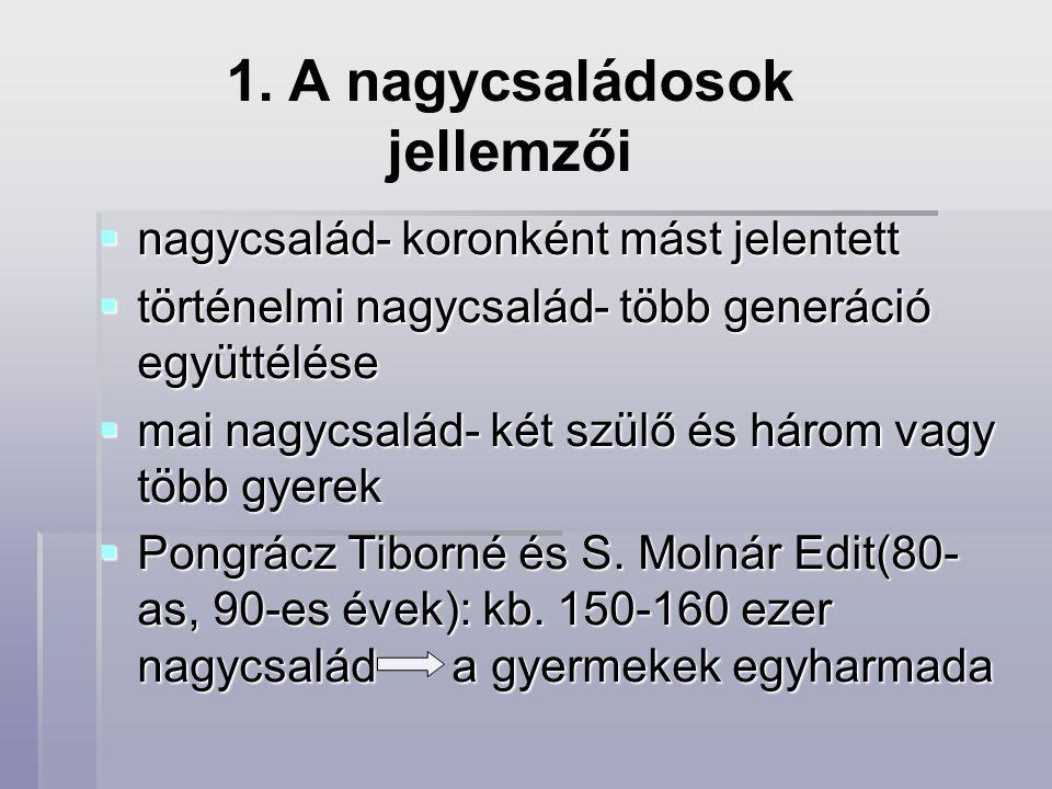  Teleki Béla (1999): ez a családtípus a gyermekek 19,6%-nál áll fenn  KSH 2005.