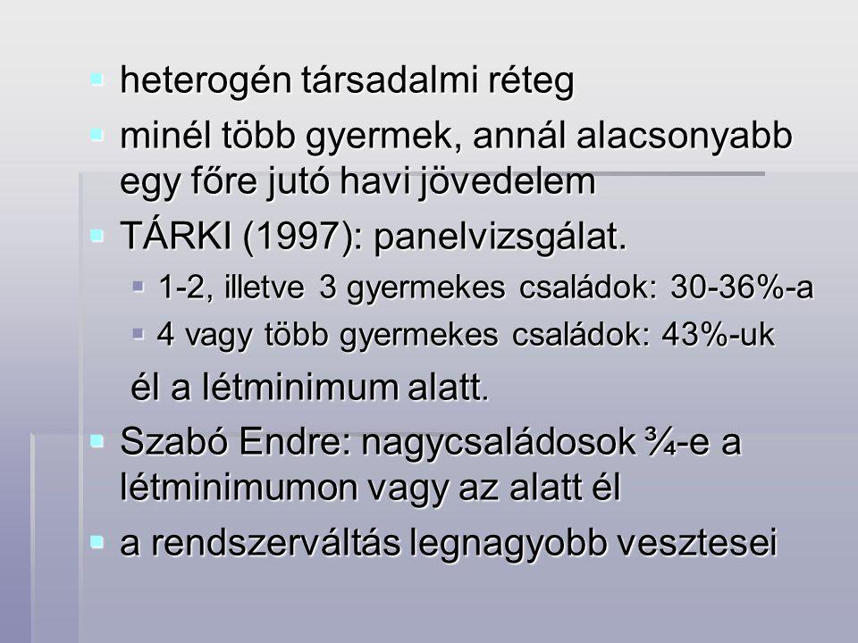 heterogén társadalmi réteg  minél több gyermek, annál alacsonyabb egy főre jutó havi jövedelem  TÁRKI (1997): panelvizsgálat.  1-2, illetve 3 gye