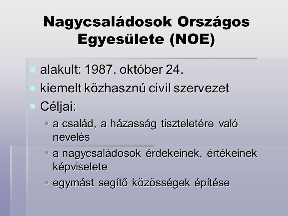 Nagycsaládosok Országos Egyesülete (NOE)  alakult: 1987. október 24.  kiemelt közhasznú civil szervezet  Céljai:  a család, a házasság tiszteletér