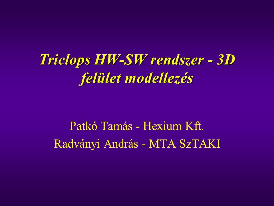 Triclops HW-SW rendszer - 3D felület modellezés Patkó Tamás - Hexium Kft. Radványi András - MTA SzTAKI