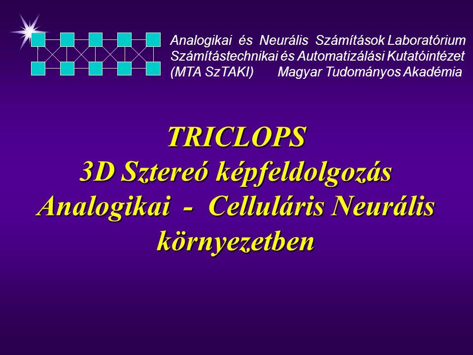 TRICLOPS 3D Sztereó képfeldolgozás Analogikai - Celluláris Neurális környezetben Analogikai és Neurális Számítások Laboratórium Számítástechnikai és Automatizálási Kutatóintézet (MTA SzTAKI) Magyar Tudományos Akadémia