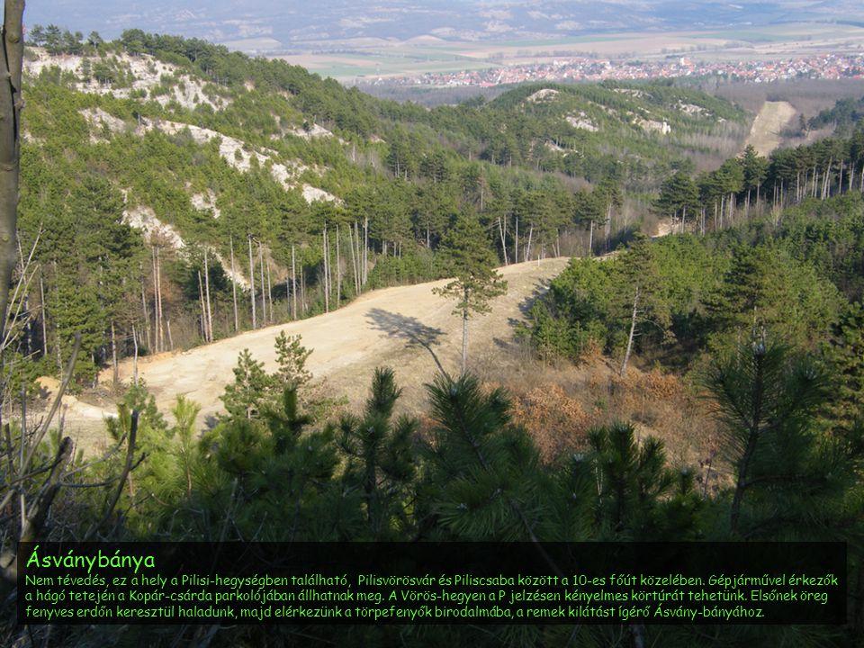 Ásványbánya Nem tévedés, ez a hely a Pilisi-hegységben található, Pilisvörösvár és Piliscsaba között a 10-es főút közelében. Gépjárművel érkezők a hág