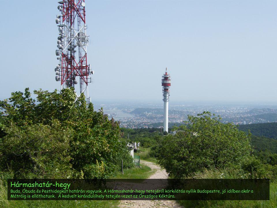Hármashatár-hegy Buda, Óbuda és Pesthidegkút határán vagyunk. A Hármashatár-hegy tetejéről körkilátás nyílik Budapestre, jó időben akár a Mátráig is e