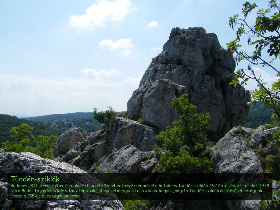 Tündér-sziklák Budapest XII. kerületében a zugligeti Libegő közelében helyezkednek el a hatalmas Tündér-sziklák. 1977 óta védett terület. 1978 óta a B