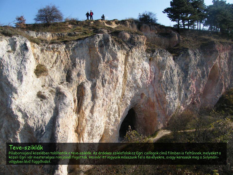 Teve-sziklák Pilisborosjenő közelében találhatók a teve-sziklák. Az érdekes sziklafalak az Egri csillagok című filmben is feltűnnek, melyeket a közeli