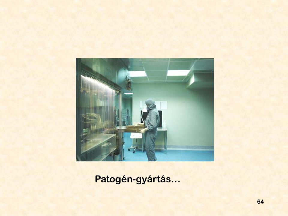 64 Patogén-gyártás…