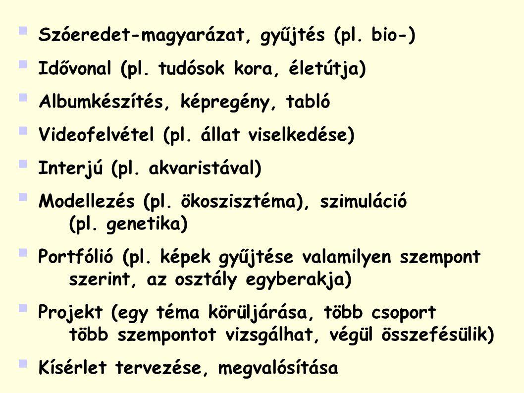  Szóeredet-magyarázat, gyűjtés (pl. bio-)  Idővonal (pl.