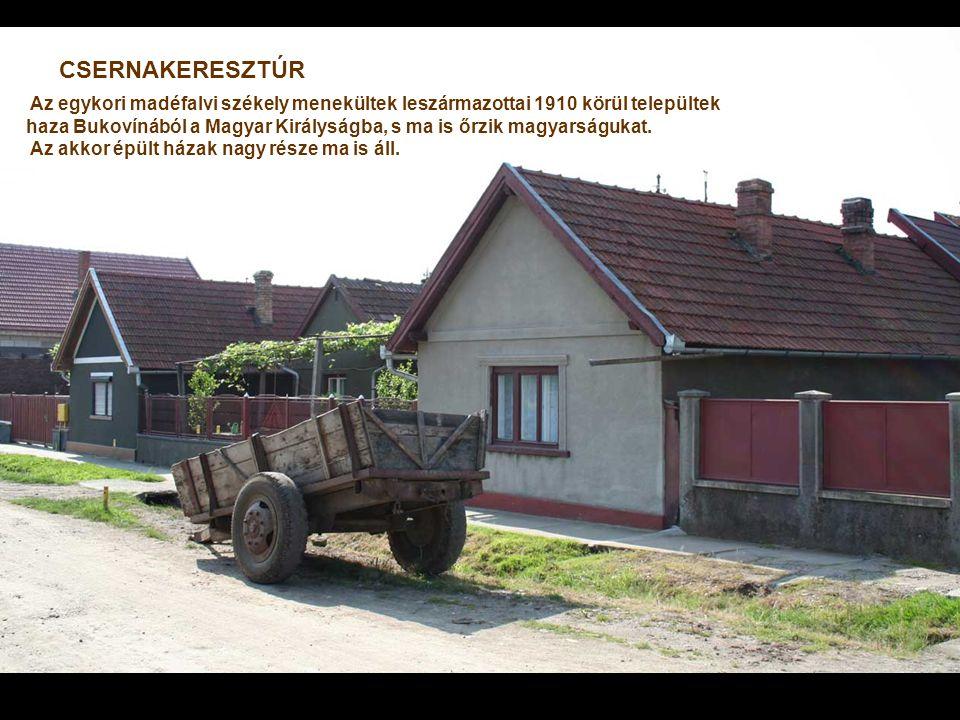 CSERNAKERESZTÚR Az egykori madéfalvi székely menekültek leszármazottai 1910 körül települtek haza Bukovínából a Magyar Királyságba, s ma is őrzik magyarságukat.