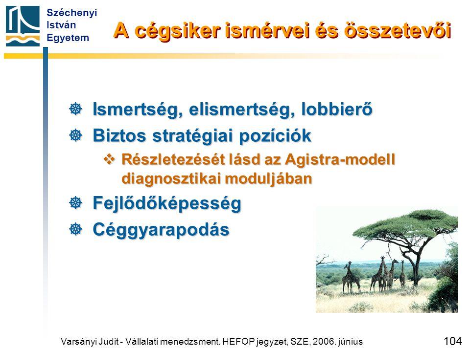 Széchenyi István Egyetem 104 A cégsiker ismérvei és összetevői  Ismertség, elismertség, lobbierő  Biztos stratégiai pozíciók  Részletezését lásd az