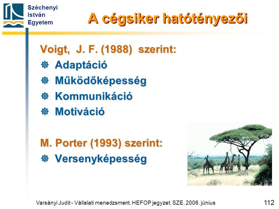 Széchenyi István Egyetem 112 A cégsiker hatótényezői Voigt, J. F. (1988) szerint:  Adaptáció  Működőképesség  Kommunikáció  Motiváció M. Porter (1