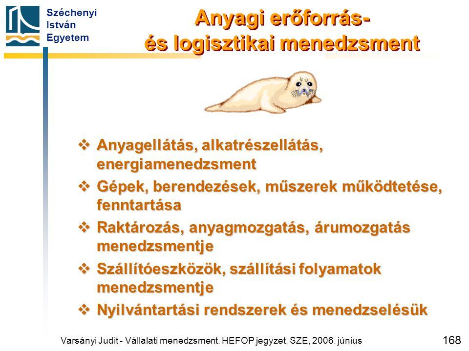 Széchenyi István Egyetem 168 Anyagi erőforrás- és logisztikai menedzsment  Anyagellátás, alkatrészellátás, energiamenedzsment  Gépek, berendezések,