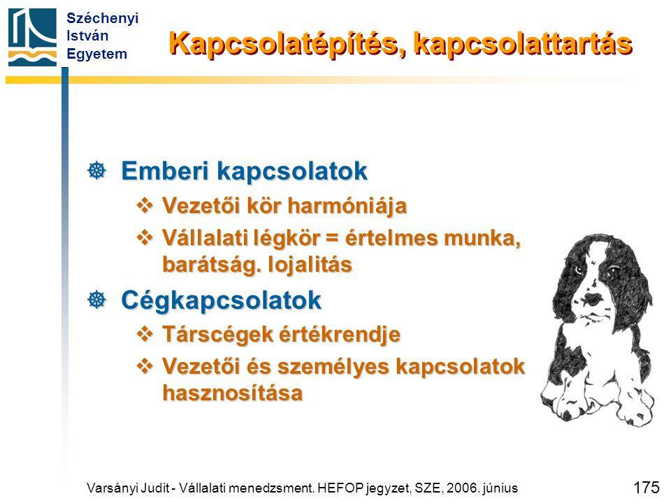 Széchenyi István Egyetem 175 Kapcsolatépítés, kapcsolattartás  Emberi kapcsolatok  Vezetői kör harmóniája  Vállalati légkör = értelmes munka, barát