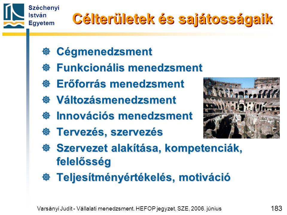 Széchenyi István Egyetem 183 Célterületek és sajátosságaik  Cégmenedzsment  Funkcionális menedzsment  Erőforrás menedzsment  Változásmenedzsment 