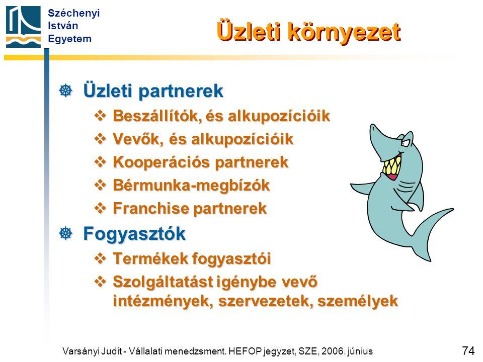 Széchenyi István Egyetem 74 Üzleti környezet  Üzleti partnerek  Beszállítók, és alkupozícióik  Vevők, és alkupozícióik  Kooperációs partnerek  Bé