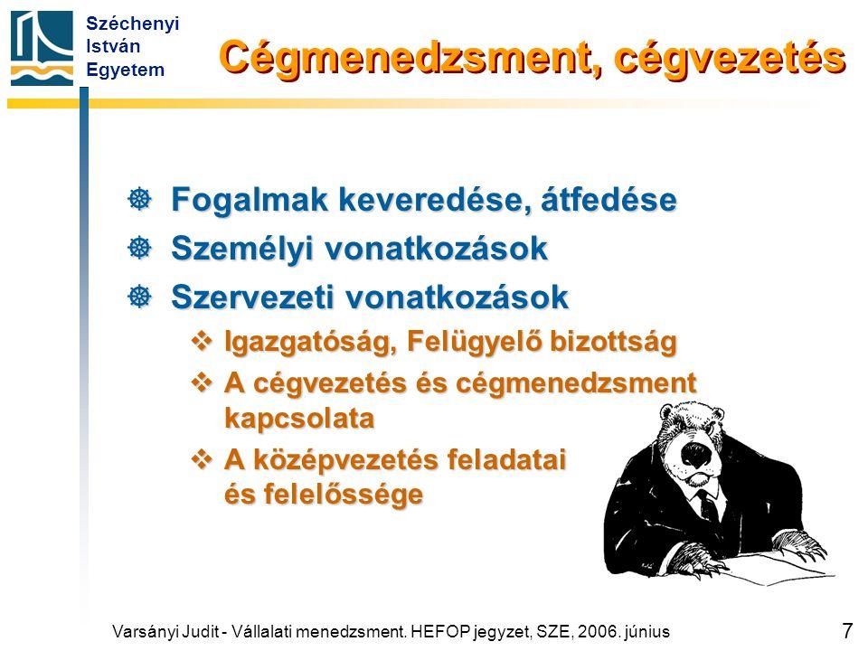 Széchenyi István Egyetem 7 Cégmenedzsment, cégvezetés  Fogalmak keveredése, átfedése  Személyi vonatkozások  Szervezeti vonatkozások  Igazgatóság,