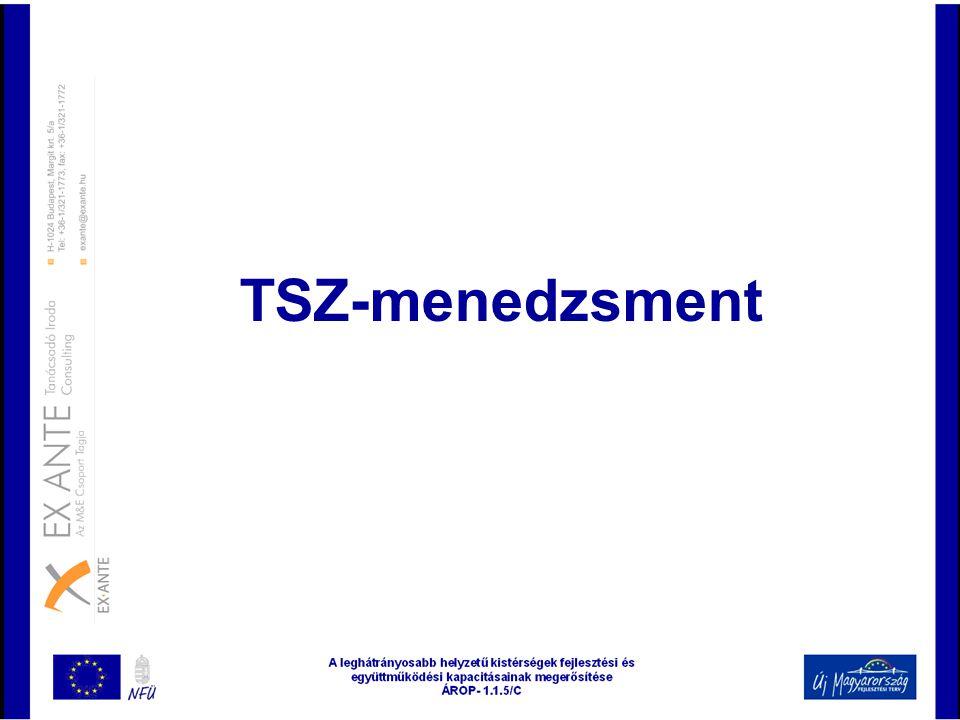 TSZ-menedzsment