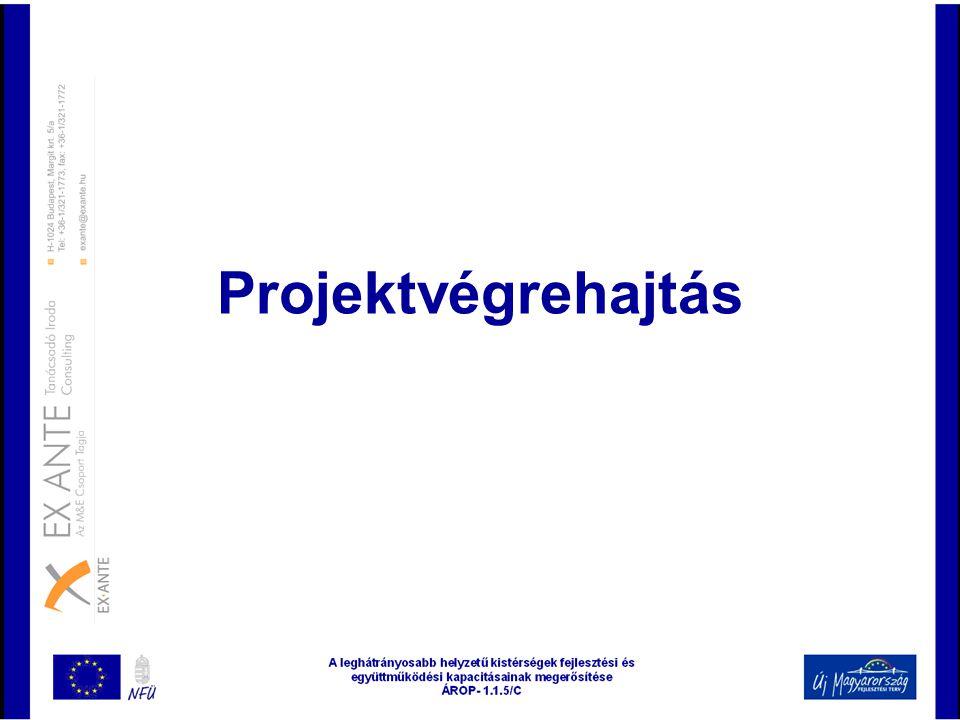 Projektvégrehajtás
