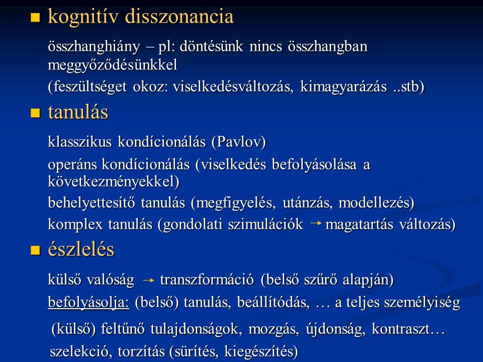  kognitív disszonancia összhanghiány – pl: döntésünk nincs összhangban meggyőződésünkkel (feszültséget okoz: viselkedésváltozás, kimagyarázás..stb) 