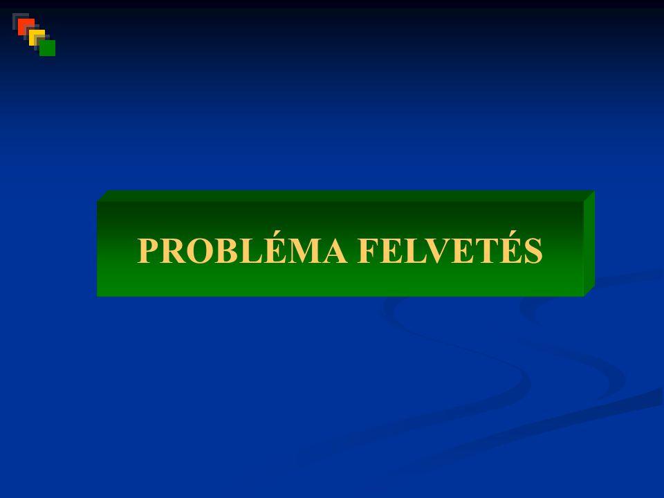 PROBLÉMA FELVETÉS