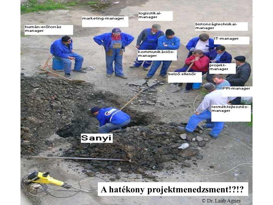 Projektmenedzsment Főiskolai szakképzés Projektmenedzsment © Dr.