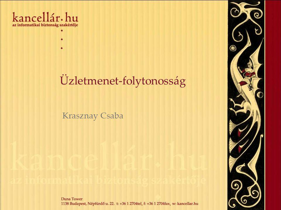 Üzletmenet-folytonosság Krasznay Csaba