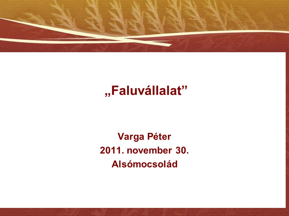 """Faluvállalat"" Varga Péter 2011. november 30. Alsómocsolád"