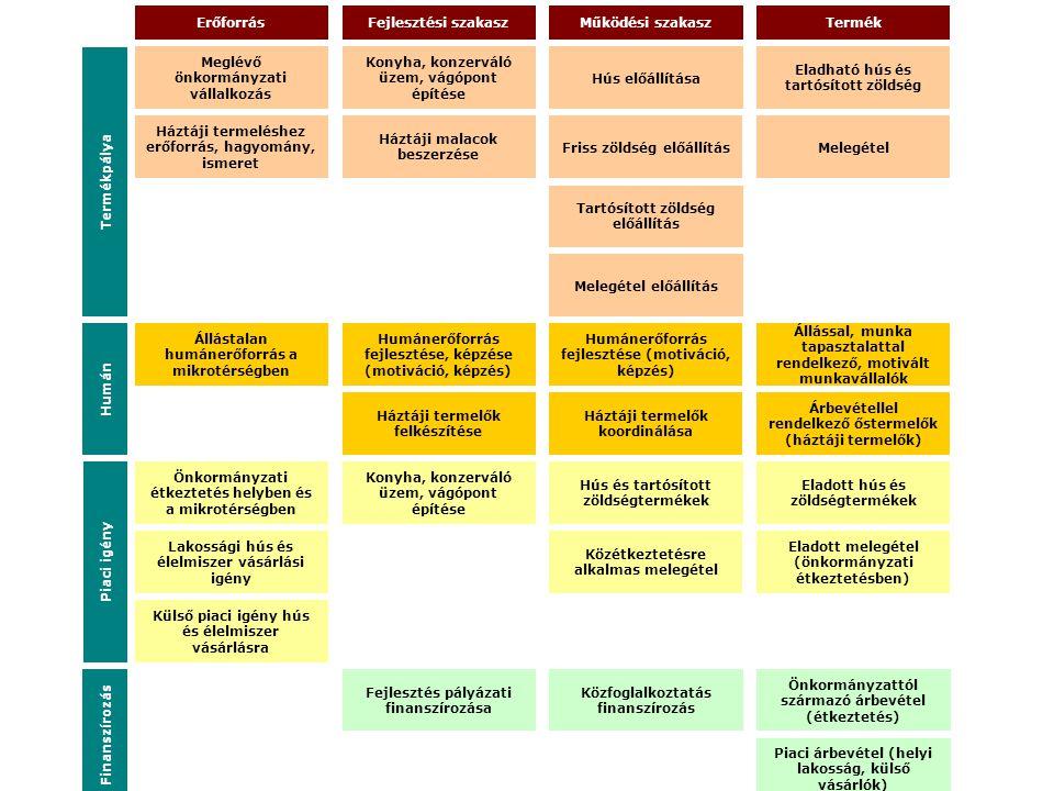 Meglévő önkormányzati vállalkozás Fejlesztés pályázati finanszírozása Erőforrás Konyha, konzerváló üzem, vágópont építése Háztáji malacok beszerzése K