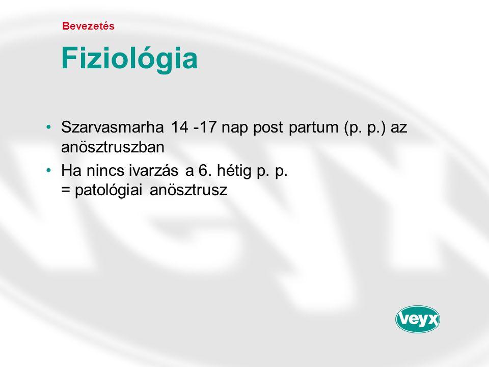 •Szarvasmarha 14 -17 nap post partum (p. p.) az anösztruszban •Ha nincs ivarzás a 6. hétig p. p. = patológiai anösztrusz Bevezetés Fiziológia