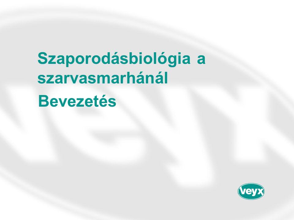 Szaporodásbiológia a szarvasmarhánál Bevezetés