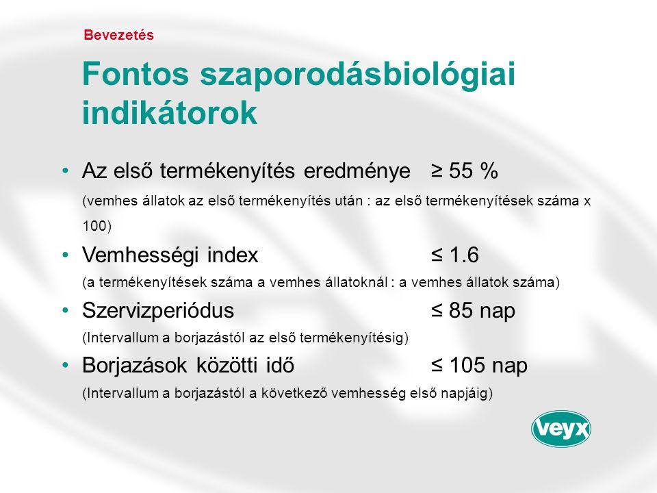 Bevezetés Gonavet Veyx ® Állat 5 Állat 4 órák az injekció után Gonavet Veyx ® Depherelin