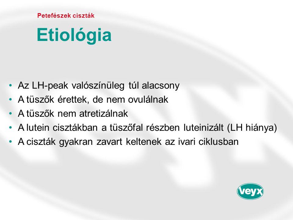 •Az LH-peak valószínüleg túl alacsony •A tüszők érettek, de nem ovulálnak •A tüszők nem atretizálnak •A lutein cisztákban a tüszőfal részben luteinizá