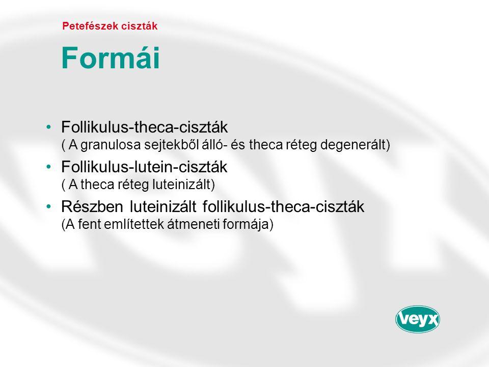 •Follikulus-theca-ciszták ( A granulosa sejtekből álló- és theca réteg degenerált) •Follikulus-lutein-ciszták ( A theca réteg luteinizált) •Részben lu