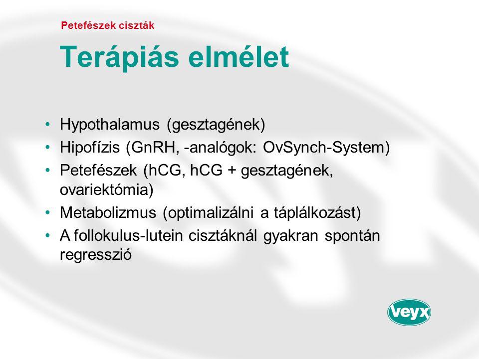 •Hypothalamus (gesztagének) •Hipofízis (GnRH, -analógok: OvSynch-System) •Petefészek (hCG, hCG + gesztagének, ovariektómia) •Metabolizmus (optimalizál