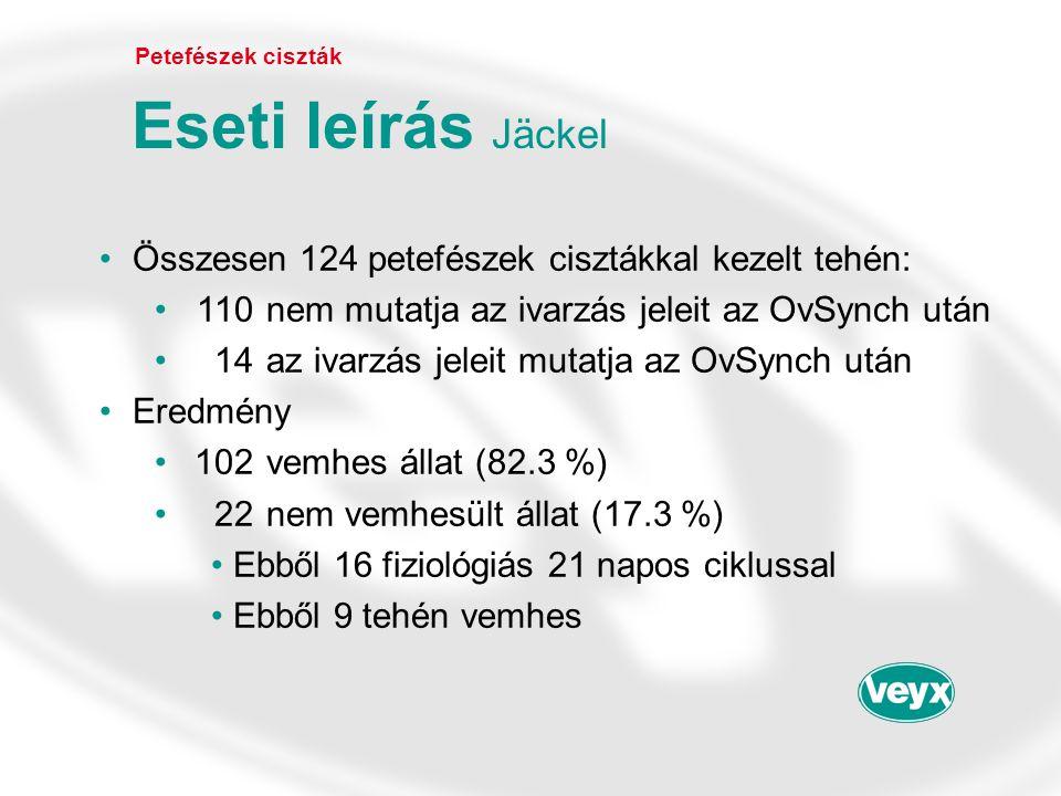 •Összesen 124 petefészek cisztákkal kezelt tehén: •110nem mutatja az ivarzás jeleit az OvSynch után •14az ivarzás jeleit mutatja az OvSynch után •Ered