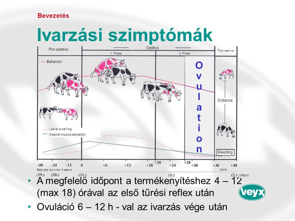 •Aktív hatóanyag: PGF 2α -analóg (kloprosztenol) •Megbízhatóan indukálja a luteolízist 1 – 2 napon belül •Előfeltétel: Corpus luteum-sárgatest (5 – 16 nap az ovuláció után a fiziológiás ivari ciklusban) •A progeszteron szint 1 ng/ml plazma érték alá esik Bevezetés PGF Veyx ® forte