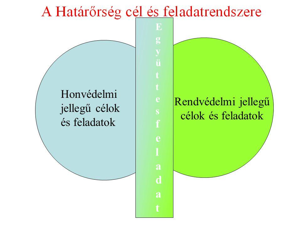 A TEAM VEZETŐ KAPCSOLATAI SZAKMAI VEZETŐ 1.