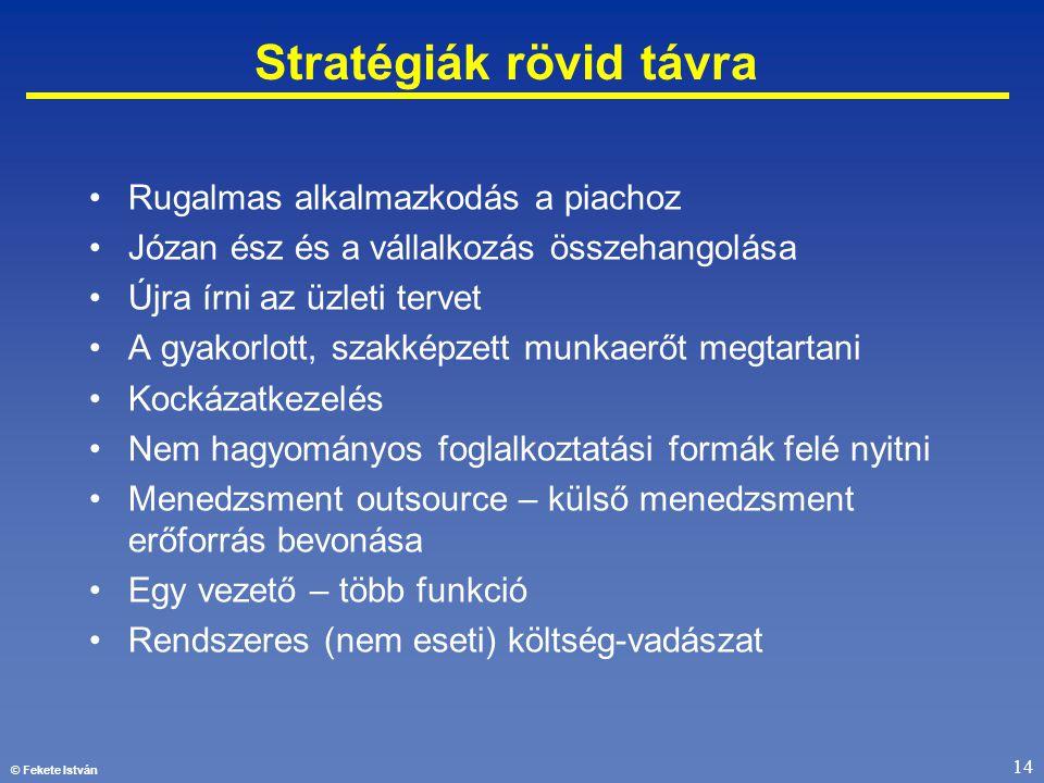 © Fekete István 14 Stratégiák rövid távra •Rugalmas alkalmazkodás a piachoz •Józan ész és a vállalkozás összehangolása •Újra írni az üzleti tervet •A