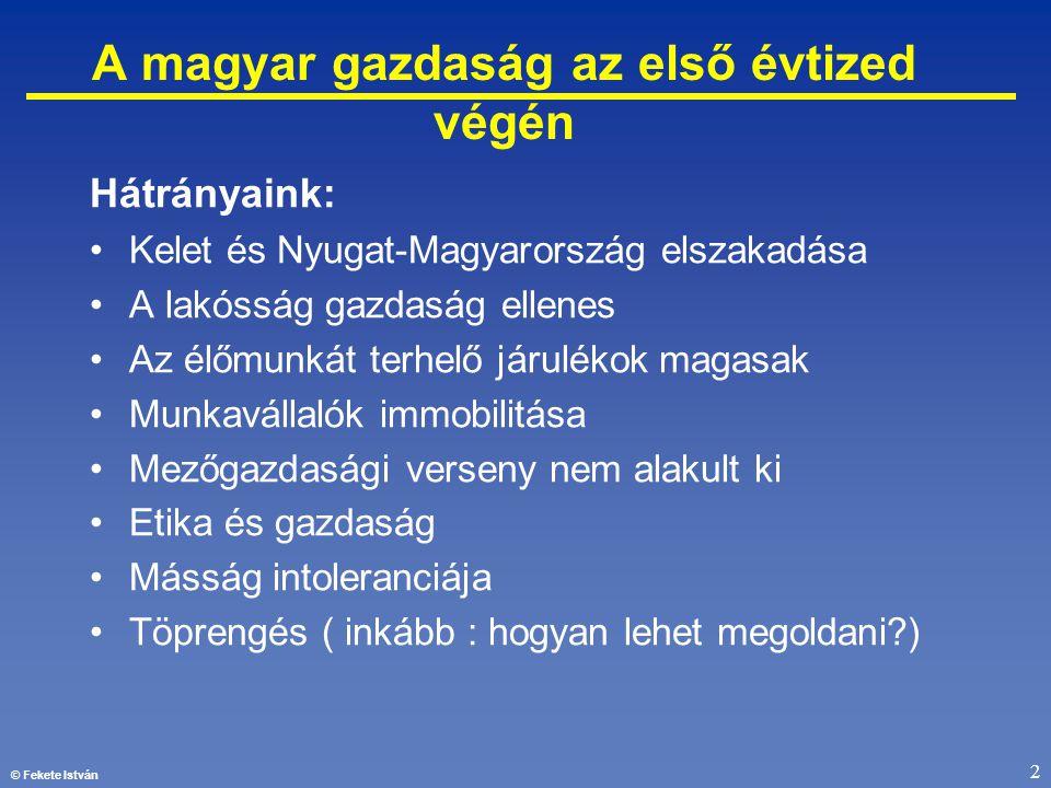 © Fekete István 2 A magyar gazdaság az első évtized végén Hátrányaink: •Kelet és Nyugat-Magyarország elszakadása •A lakósság gazdaság ellenes •Az élőm